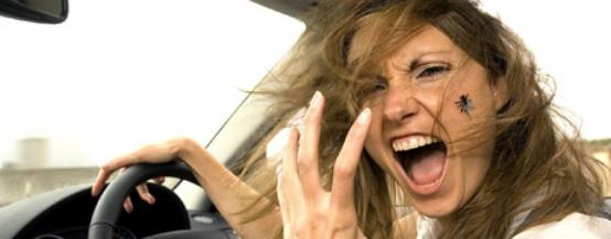 automobilista-stress